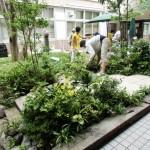 庭造りデモ(完成間近)