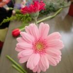 フワラーアレンジメントの花材