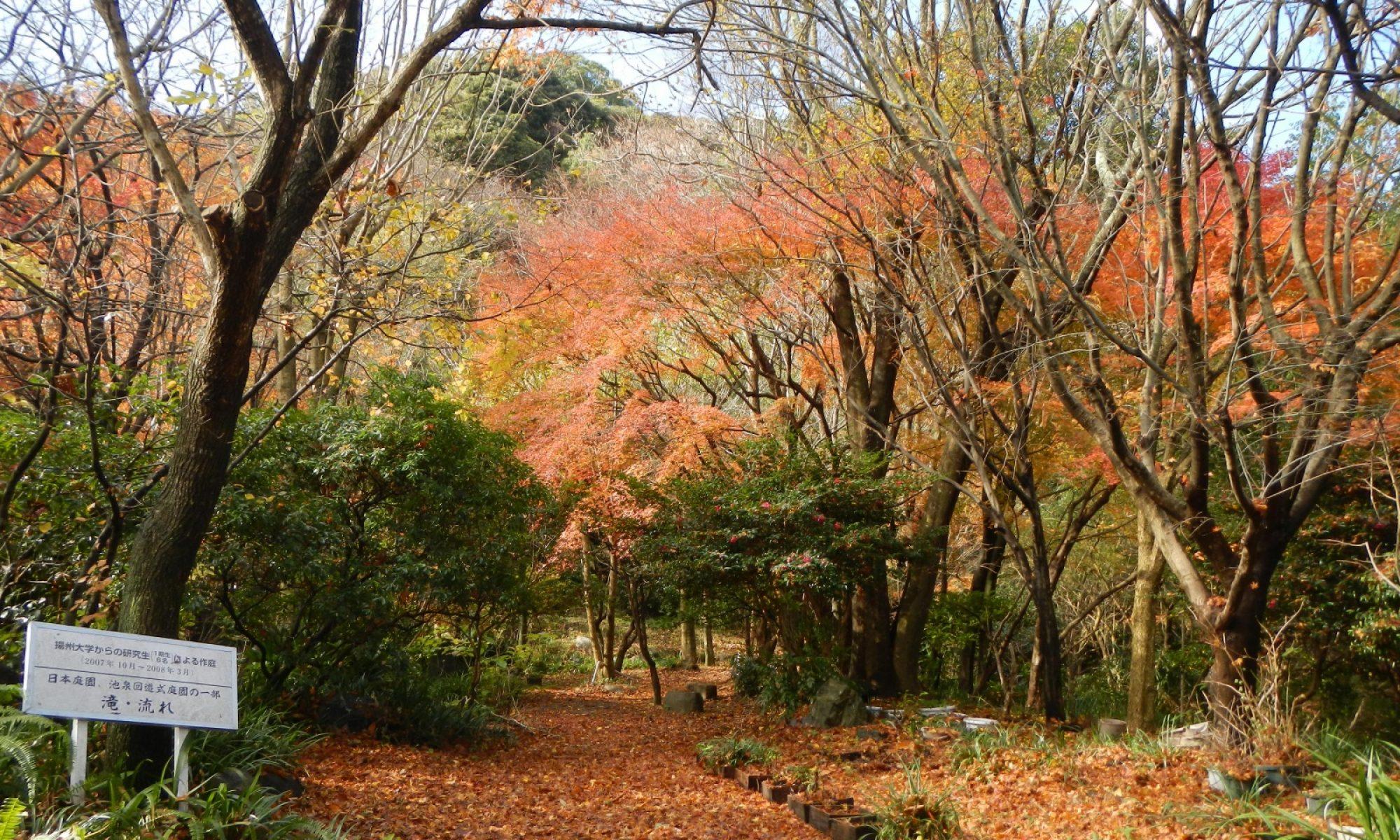 西日本短期大学 緑地環境学科
